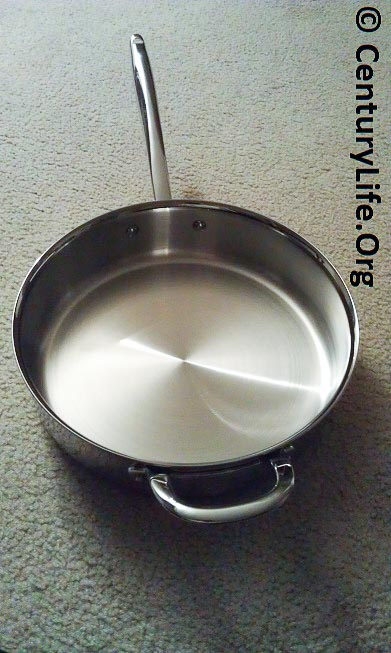 Williams Sonoma Thermo Clad Stainless Steel Saute Pan