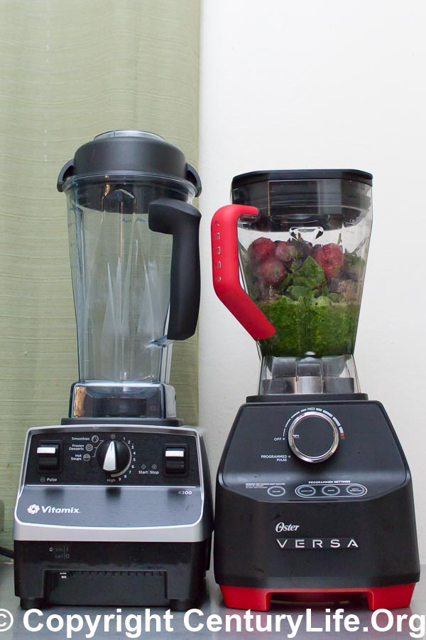 Left: Vitamix 6300; Right: Oster Versa 1400
