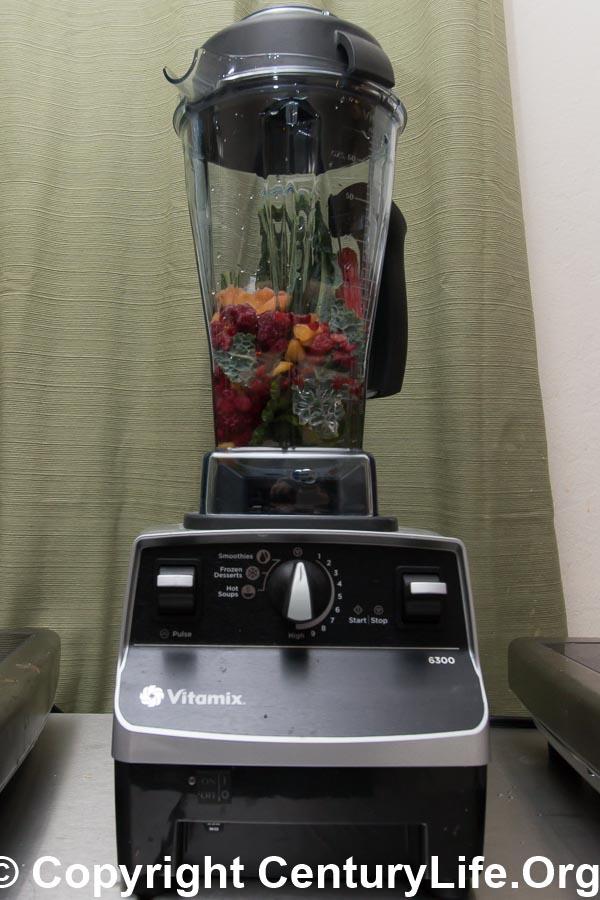 Vitamix 6300